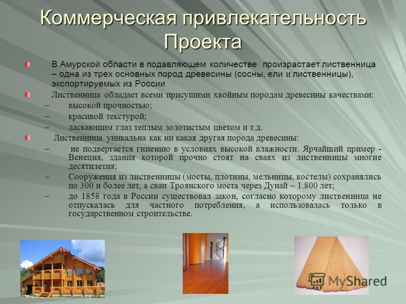 Коммерческая привлекательность Проекта В Амурской области в подавляющем количестве произрастает лиственница – одна из трех основных пород древесины (сосны, ели и лиственницы), экспортируемых из России Лиственница обладает всеми присущими хвойным поро