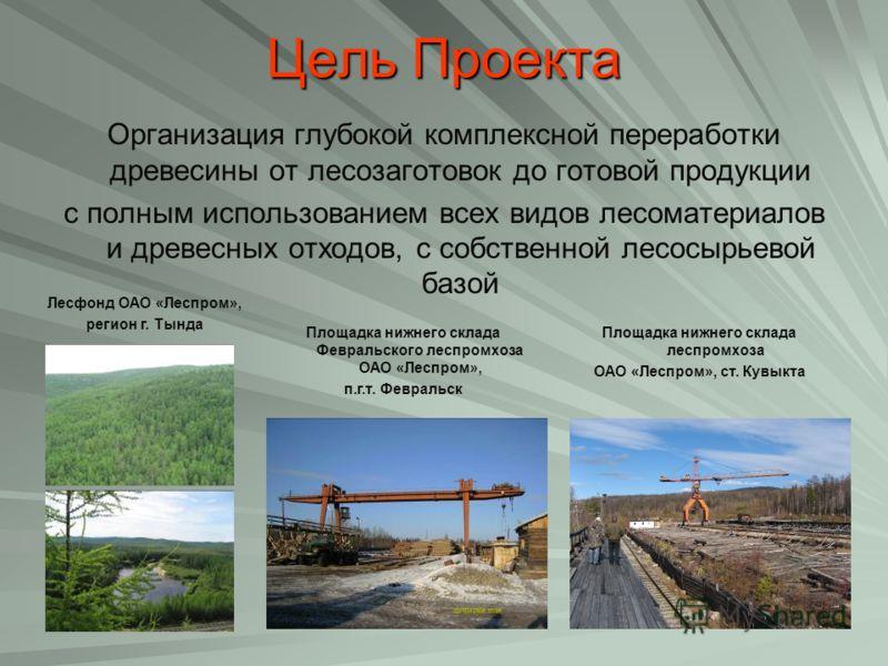 Цель Проекта Организация глубокой комплексной переработки древесины от лесозаготовок до готовой продукции с полным использованием всех видов лесоматериалов и древесных отходов, с собственной лесосырьевой базой Лесфонд ОАО «Леспром», регион г. Тында П