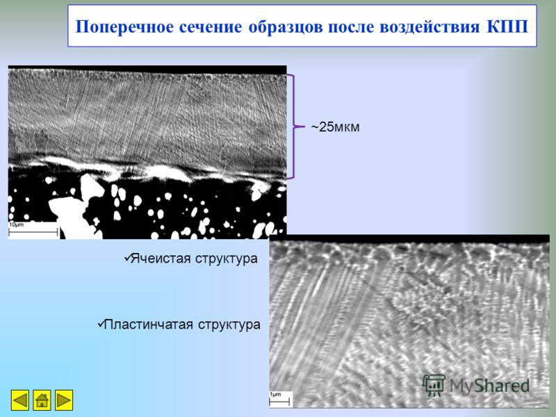 Поперечное сечение образцов после воздействия КПП ~25мкм Ячеистая структура Пластинчатая структура