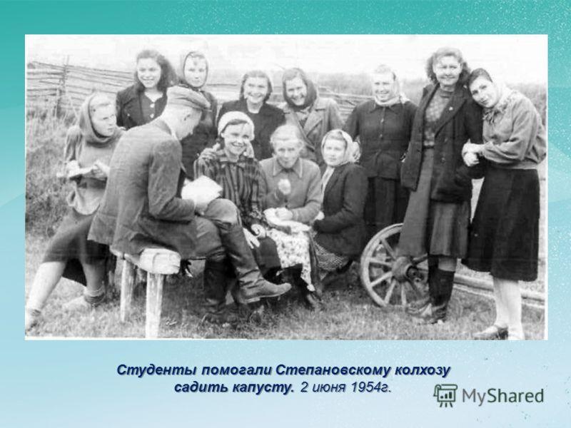 Студенты помогали Степановскому колхозу садить капусту. 2 июня 1954г.