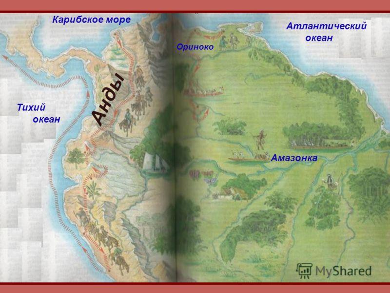 Атлантический океан Тихий океан Амазонка Ориноко Анды Карибское море