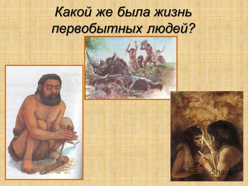 Какой же была жизнь первобытных людей? 12