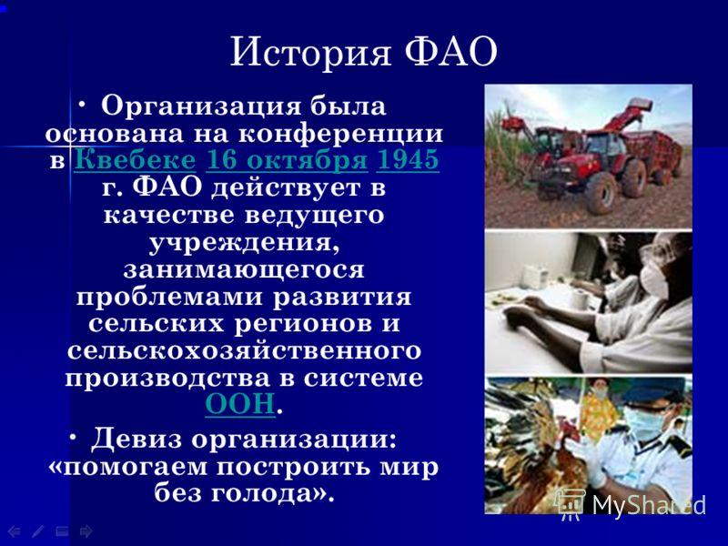 История ФАО Организация была основана на конференции в Квебеке 16 октября 1945 г. ФАО действует в качестве ведущего учреждения, занимающегося проблемами развития сельских регионов и сельскохозяйственного производства в системе ООН.Квебеке16 октября19