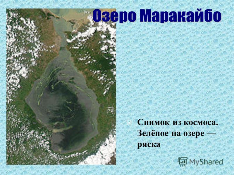 Снимок из космоса. Зелёное на озере ряска