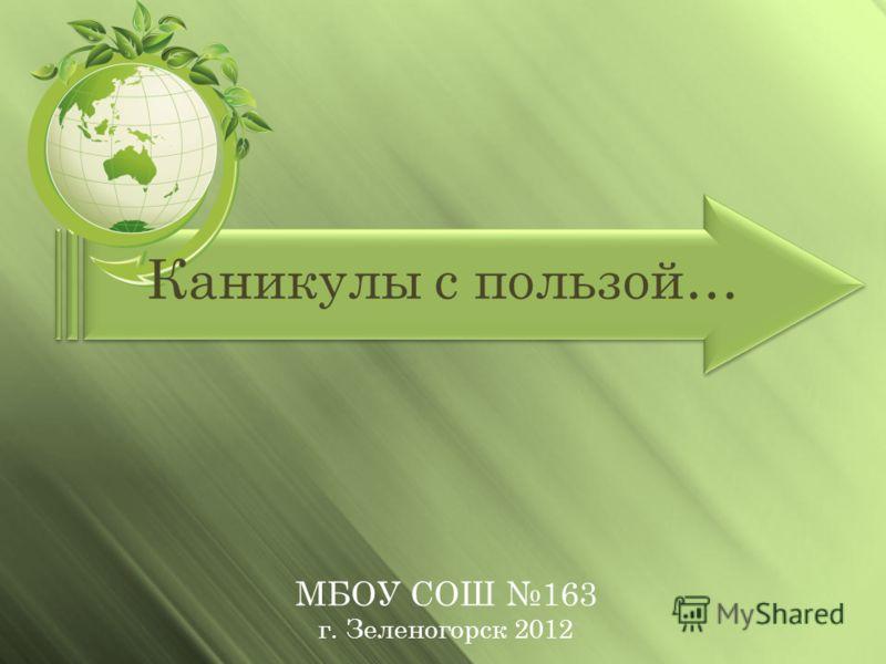 Каникулы с пользой… МБОУ СОШ 163 г. Зеленогорск 2012