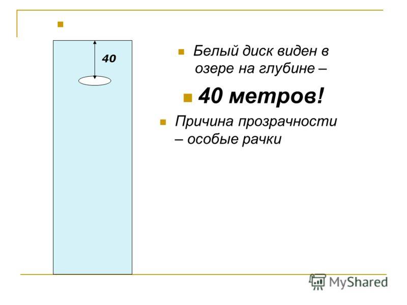 Белый диск виден в озере на глубине – 40 метров! Причина прозрачности – особые рачки 40