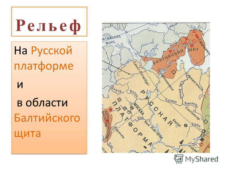 Рельеф На Русской платформе и в области Балтийского щита На Русской платформе и в области Балтийского щита