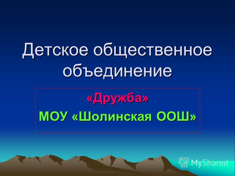Детское общественное объединение «Дружба» МОУ «Шолинская ООШ»