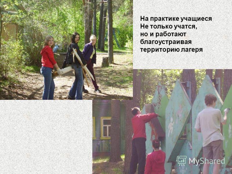 На практике учащиеся Не только учатся, но и работают благоустраивая территорию лагеря