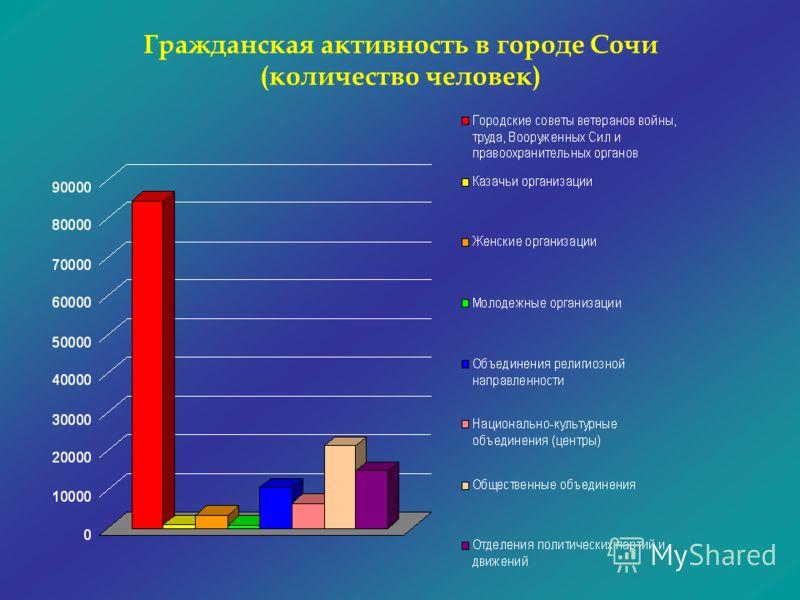 Гражданская активность в городе Сочи (количество человек)