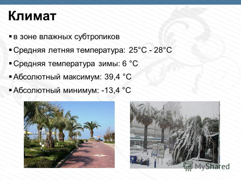 Page 7 Климат в зоне влажных субтропиков Средняя летняя температура: 25°C - 28°C Cредняя температура зимы: 6 °C Абсолютный максимум: 39,4 °C Абсолютный минимум: -13,4 °C