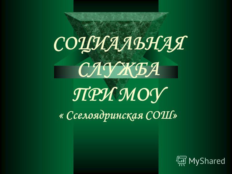 СОЦИАЛЬНАЯ СЛУЖБА ПРИ МОУ « Сселоядринская СОШ»