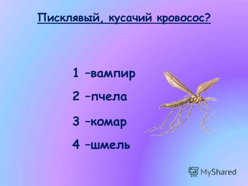 Писклявый, кусачий кровосос? 1 –вампир 2 –пчела 3 –комар 4 –шмель