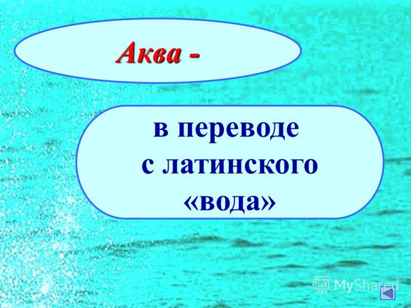 Аква - в переводе с латинского «вода»