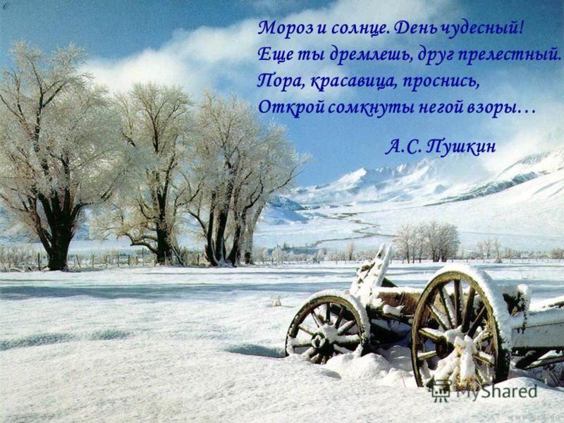 Мороз и солнце. День чудесный! Еще ты дремлешь, друг прелестный. Пора, красавица, проснись, Открой сомкнуты негой взоры… А.С. Пушкин