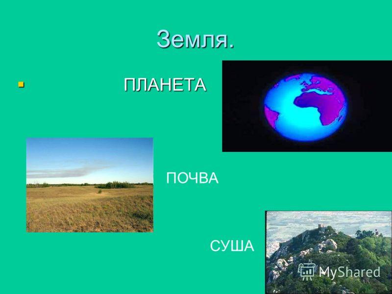 Презентация к уроку окружающего мир