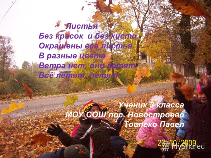 Листья Без красок и без кисти Окрашены все листья В разные цвета Ветра нет, они летят Всё летят, летят. Ученик 3 класса МОУ СОШ пос. Новостроево Товпеко Павел