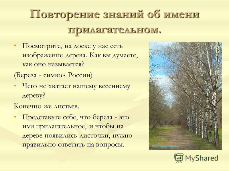 Повторение знаний об имени прилагательном. Посмотрите, на доске у нас есть изображение дерева. Как вы думаете, как оно называется? (Берёза - символ России) Чего не хватает нашему весеннему дереву? Конечно же листьев. Представьте себе, что береза - эт