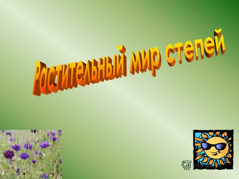 Донская реальная гимназия Васильцова Татьяна Леонидовна
