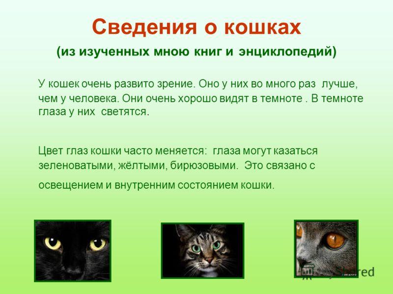 Сведения о кошках (из изученных мною книг и энциклопедий) У кошек очень развито зрение. Оно у них во много раз лучше, чем у человека. Они очень хорошо видят в темноте. В темноте глаза у них светятся. Цвет глаз кошки часто меняется: глаза могут казать