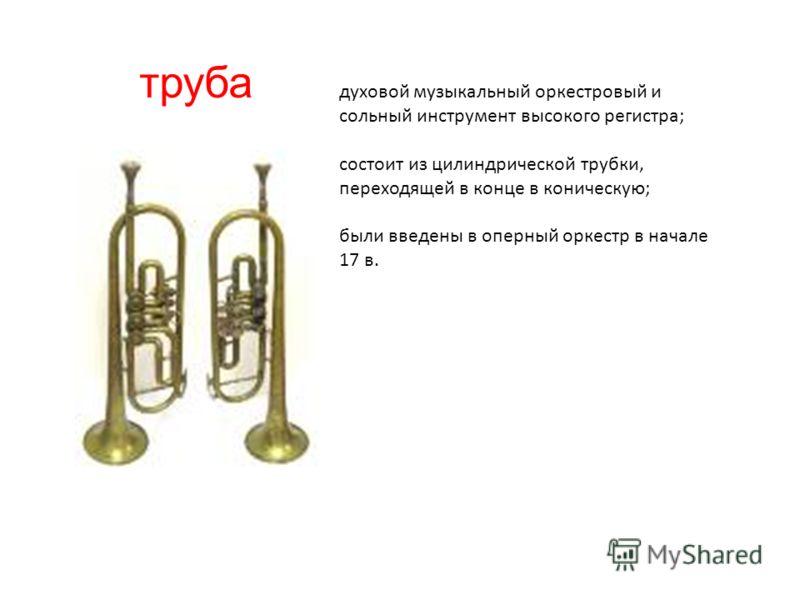 труба духовой музыкальный оркестровый и сольный инструмент высокого регистра; состоит из цилиндрической трубки, переходящей в конце в коническую; были введены в оперный оркестр в начале 17 в.