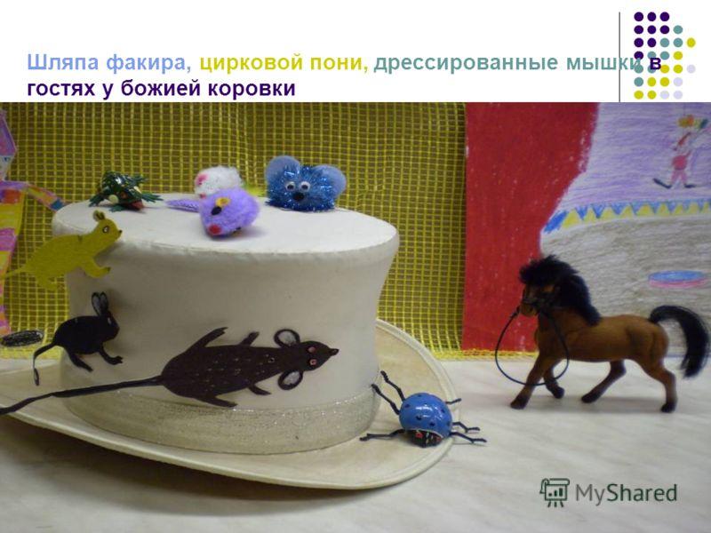 Шляпа факира, цирковой пони, дрессированные мышки в гостях у божией коровки