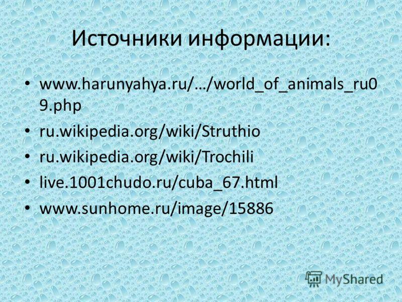 Источники информации: www.harunyahya.ru/…/world_of_animals_ru0 9.php ru.wikipedia.org/wiki/Struthio ru.wikipedia.org/wiki/Trochili live.1001chudo.ru/cuba_67.html www.sunhome.ru/image/15886