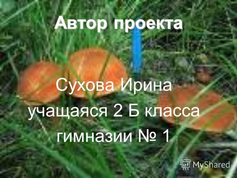 Автор проекта Сухова Ирина учащаяся 2 Б класса гимназии 1