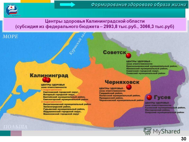 30 Центры здоровья Калининградской области (субсидия из федерального бюджета – 2993,8 тыс.руб., 3066,3 тыс.руб) Формирование здорового образа жизни