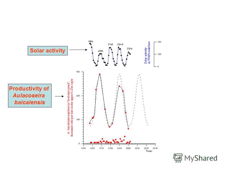 Solar activity Productivity of Aulacoseira baicalensis