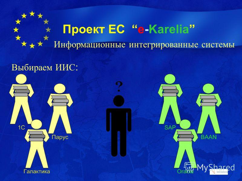 Проект ЕС e-Karelia Выбираем ИИС : Информационные интегрированные системы