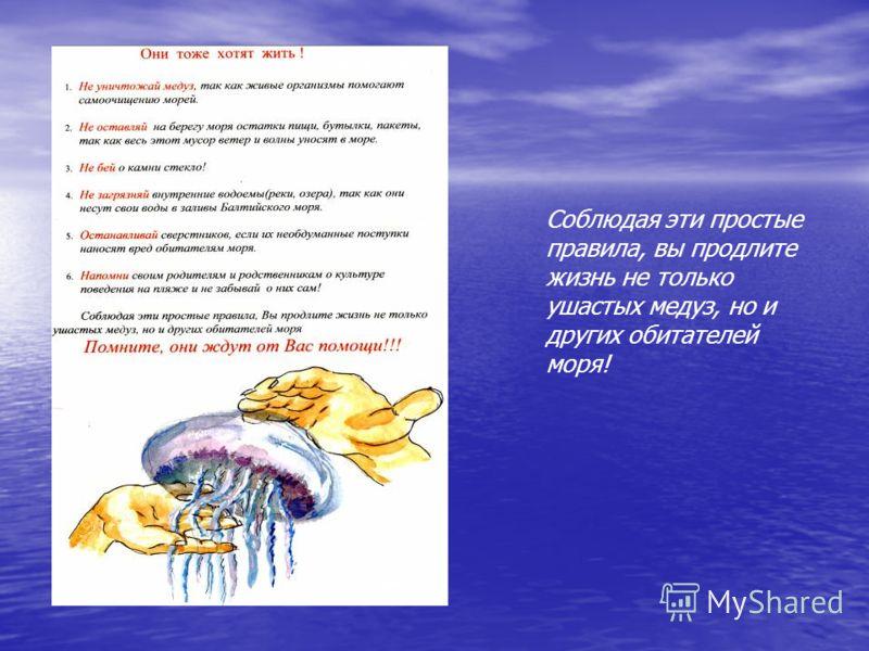 Соблюдая эти простые правила, вы продлите жизнь не только ушастых медуз, но и других обитателей моря!