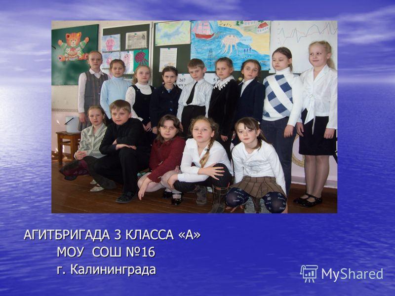 АГИТБРИГАДА 3 КЛАССА «А» МОУ СОШ 16 МОУ СОШ 16 г. Калининграда г. Калининграда