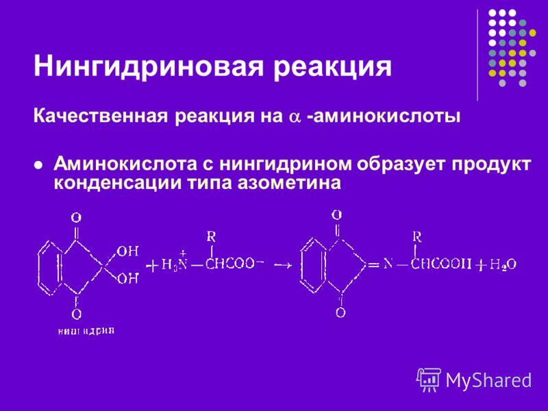 Нингидриновая реакция Качественная реакция на -аминокислоты Аминокислота с нингидрином образует продукт конденсации типа азометина
