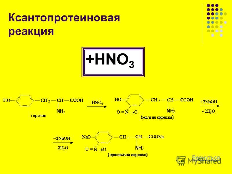 Ксантопротеиновая реакция +HNO 3 Вернуться
