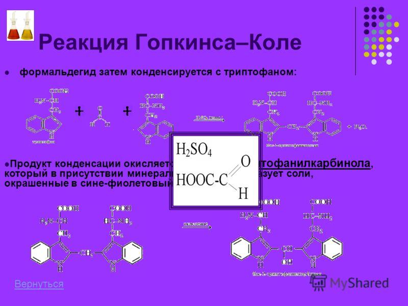 Реакция Гопкинса–Коле формальдегид затем конденсируется с триптофаном: Продукт конденсации окисляется до бис-2-триптофанилкарбинола, который в присутствии минеральных кислот образует соли, окрашенные в сине-фиолетовый цвет: Вернуться