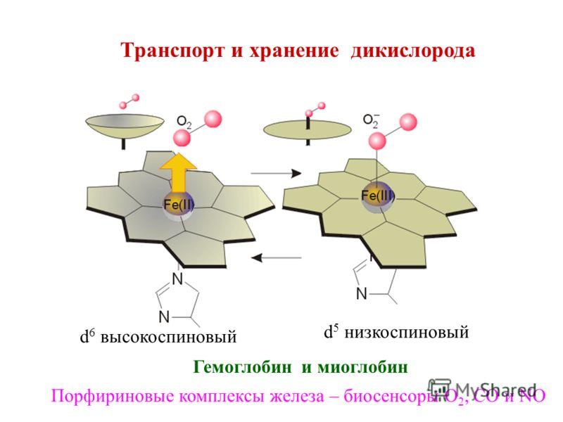 Транспорт и хранение дикислорода Гемоглобин и миоглобин d 6 высокоспиновый d 5 низкоспиновый Порфириновые комплексы железа – биосенсоры О 2, СО и NO