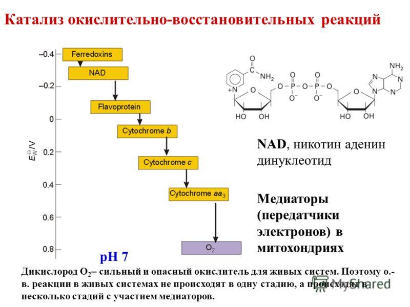Катализ окислительно-восстановительных реакций pH 7 Медиаторы (передатчики электронов) в митохондриях NAD, никотин аденин динуклеотид Дикислород О 2 – сильный и опасный окислитель для живых систем. Поэтому о.- в. реакции в живых системах не происходя