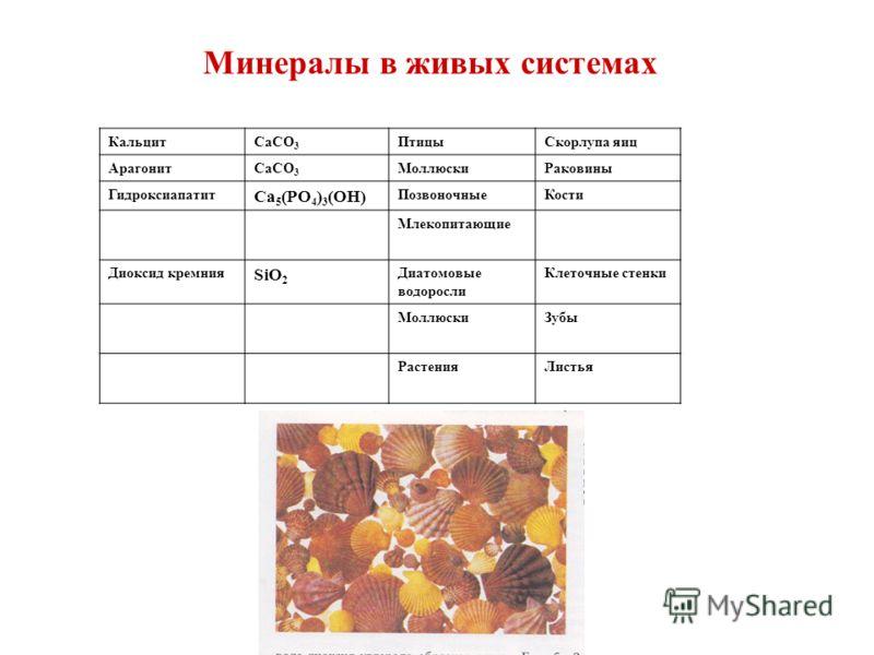 Минералы в живых системах КальцитCaCO 3 ПтицыСкорлупа яиц АрагонитCaCO 3 МоллюскиРаковины Гидроксиапатит Ca 5 (PO 4 ) 3 (OH) ПозвоночныеКости Млекопитающие Диоксид кремния SiO 2 Диатомовые водоросли Клеточные стенки МоллюскиЗубы РастенияЛистья