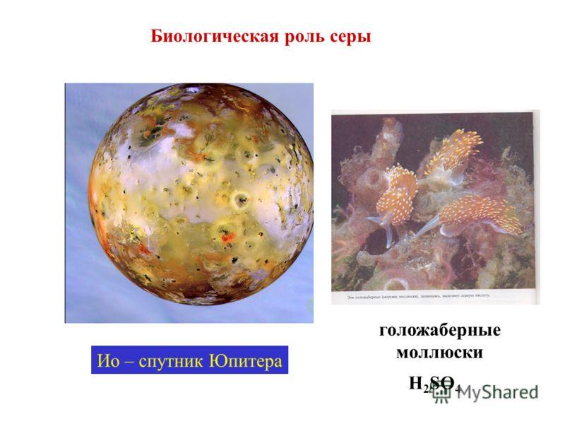 Биологическая роль серы Ио – спутник Юпитера голожаберные моллюски H 2 SO 4