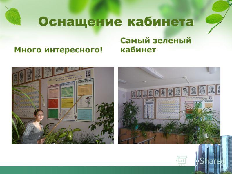 Много интересного! Самый зеленый кабинет Оснащение кабинета