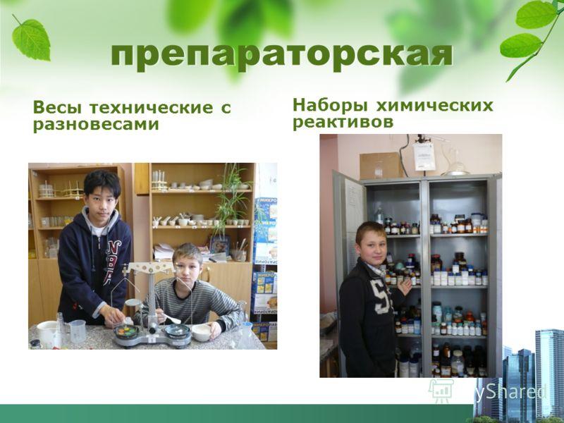 препараторская Весы технические с разновесами Наборы химических реактивов