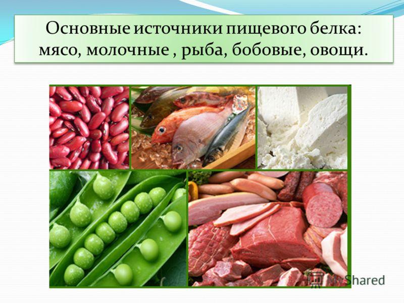 Основные источники пищевого белка: мясо, молочные, рыба, бобовые, овощи. Основные источники пищевого белка: мясо, молочные, рыба, бобовые, овощи.