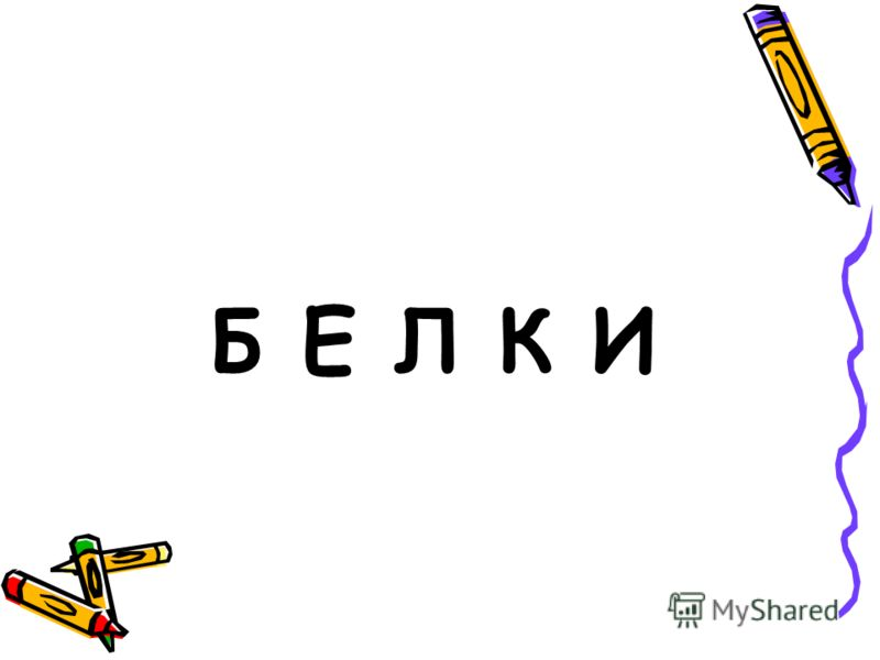 Б Е Л К И