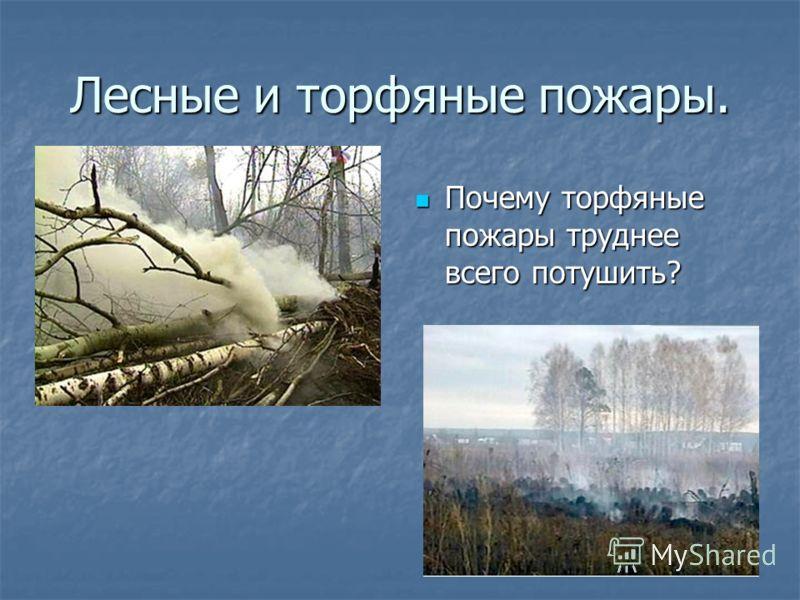 Лесные и торфяные пожары. Почему торфяные пожары труднее всего потушить? Почему торфяные пожары труднее всего потушить?