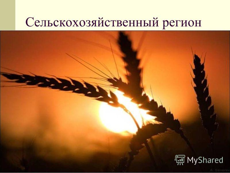 Сельскохозяйственный регион