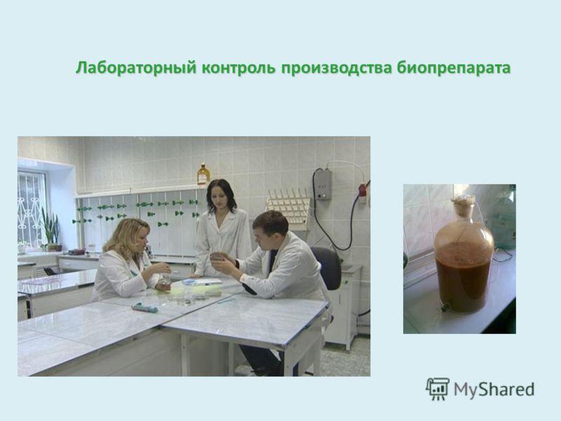 Лабораторный контроль производства биопрепарата