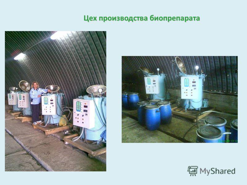 Цех производства биопрепарата