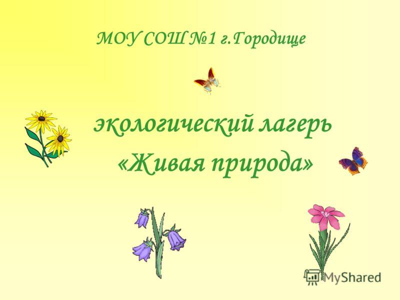 МОУ СОШ 1 г.Городище экологический лагерь «Живая природа»