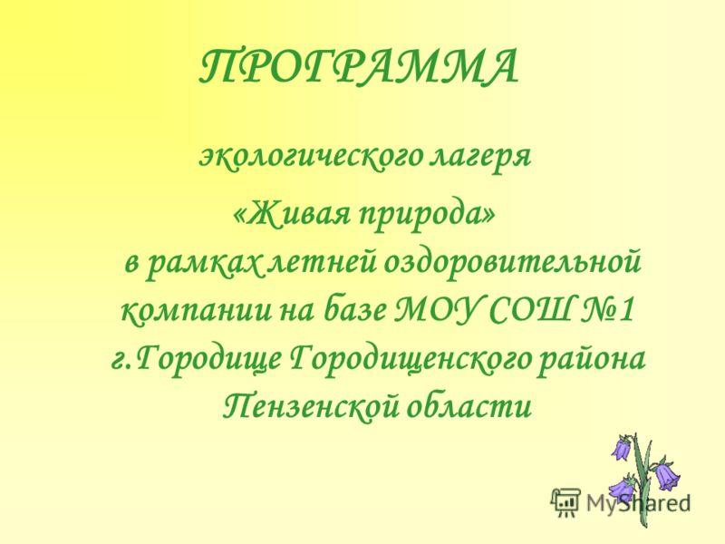 temu-prezentatsiya-pro-gorodishe-penzenskaya-oblast-foto-temu-moy